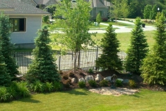 Landscaping With Trees
