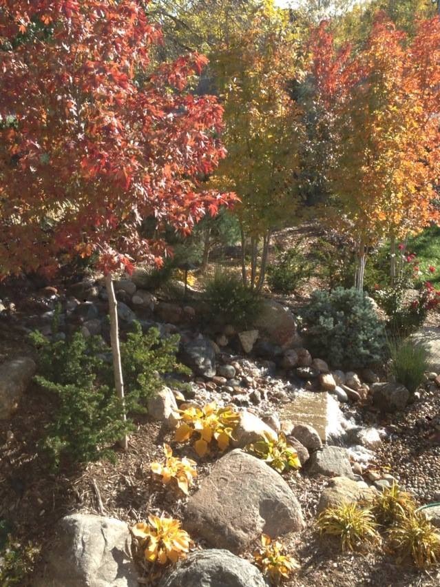 Water Feature with Trees and Landscaping by Patera